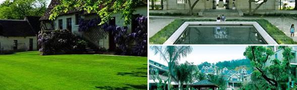 天津小庭院景观设计 不宜种植大树的奥秘