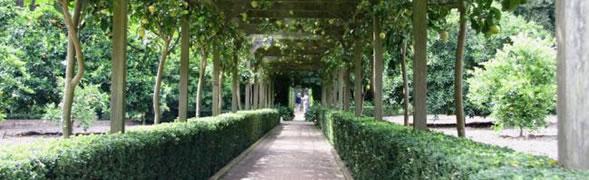 天津庭院景观设计须考虑的几大因素