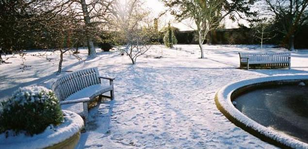 易兰德告诉你如何在冬季养护花园健康以及花园的未来趋势