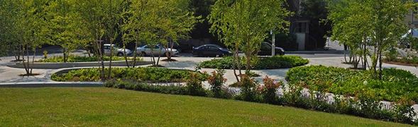 住房城乡建设部办公厅关于做好取消城市园林绿化企业资质核准行政许可事项相关工作的通知